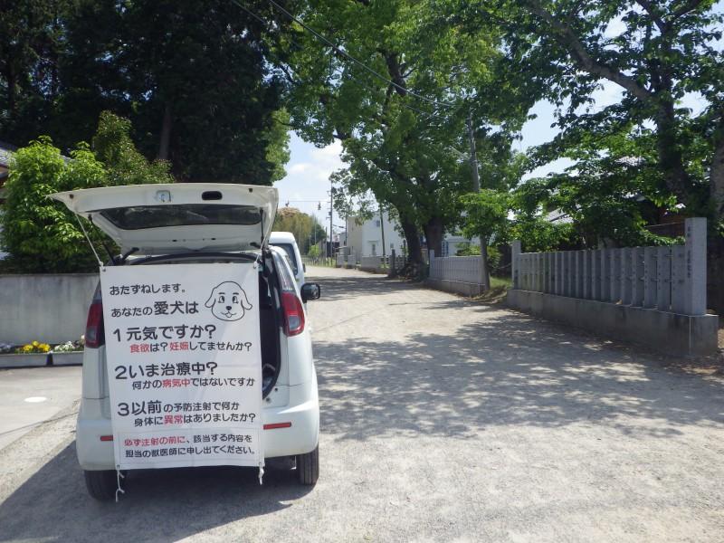 沖島で狂犬病予防注射