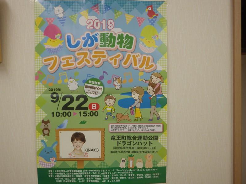 動物フェスティバル2019開催のお知らせ